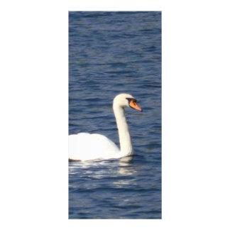 Swan Full Color Rack Card