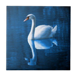 Swan Reflection on the Lake Small Square Tile