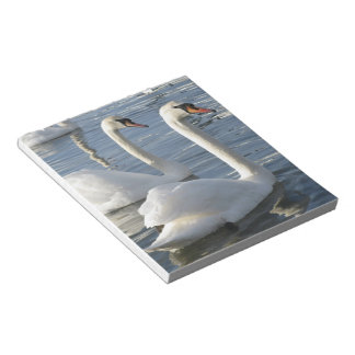 Swan Reflections Notepad
