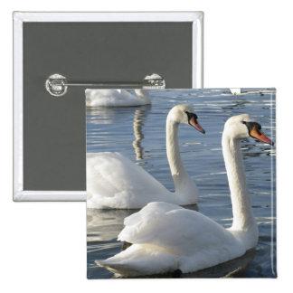 Swan Reflections Pin