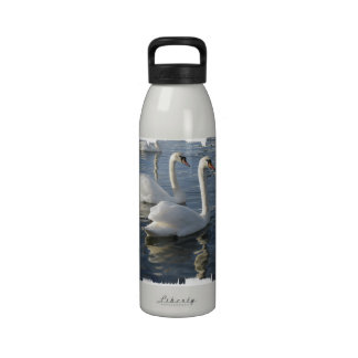 Swan Reflections Water Bottle