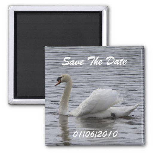 Swan Save the Date Magnets