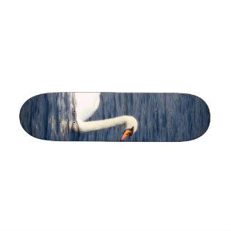 Swan Skate Boards