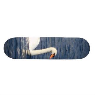 Swan Custom Skateboard