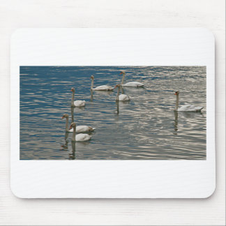 Swan Song Mouse Pad
