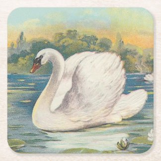 Swan Square Paper Coaster