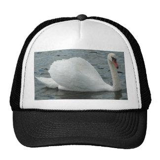 Swan swimming trucker hat