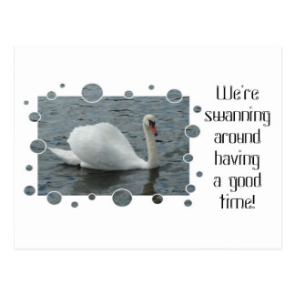 Swan swimming with bubbles frame postcard