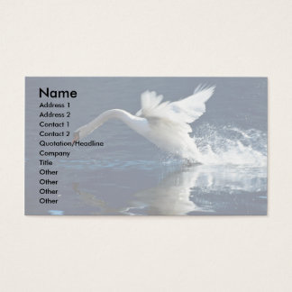 Swan taking off business card