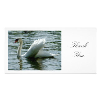 Swan - Thank You Card