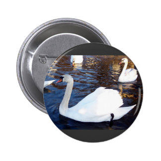 Swan White 2 Inch Round Button