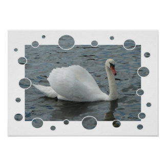 Swan, with bubbles frame Print