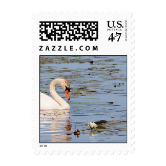 Swan with Lilly Pad Postage Stamps