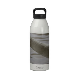 Swan with outstretched neck reusable water bottle