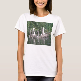 Swans and Cygnets Ladies T Shirt