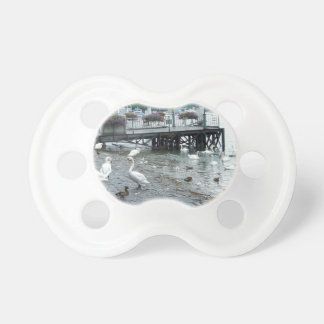 Swans and ducks in Lake Lucerne Baby Pacifier