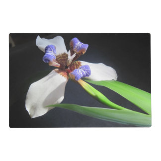 Swans and Iris Placemat Laminated Placemat