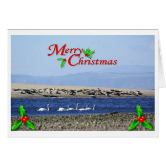 Swans and seals on a Christmas card. Greeting Card