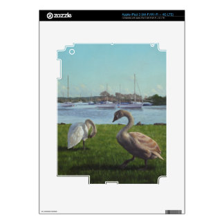 swans at Christchurch harbour iPad 3 Skin