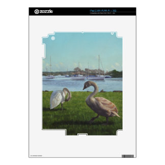 swans at Christchurch harbour Decals For The iPad 2