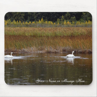 Swans at Potter Marsh Mouse Pad