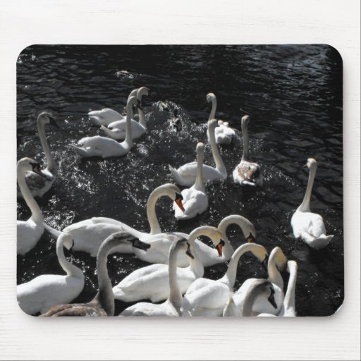 Swans away mouse pad