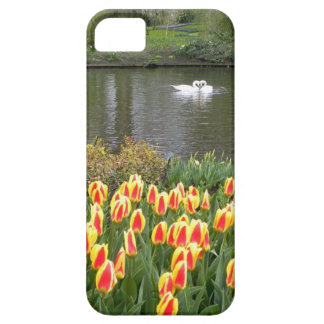 Swans by a lake with tulips, Keukenhof iPhone SE/5/5s Case