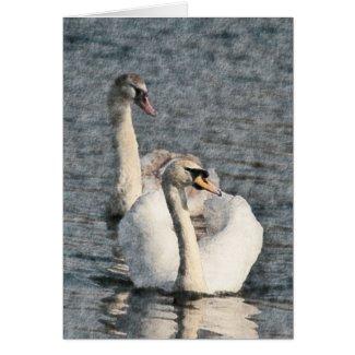 Swans card