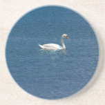 Swans Drink Coasters
