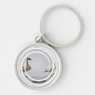 Swans Grooming at Water's Edge Keychain