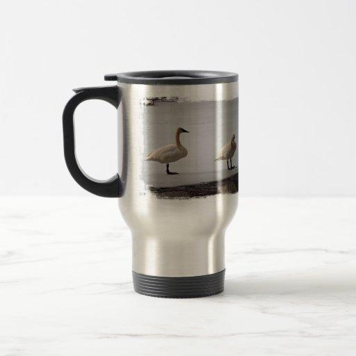 Swans Grooming at Water's Edge Travel Mug