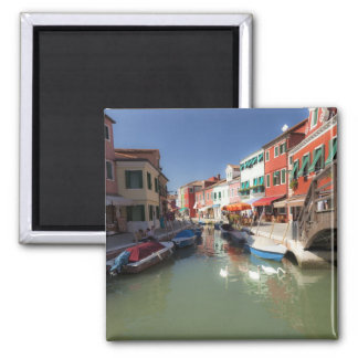Swans in canal, Burano Island, Venice, Italy 2 2 Inch Square Magnet