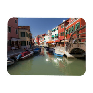Swans in canal, Burano Island, Venice, Italy 2 Rectangular Photo Magnet