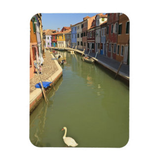 Swans in canal, Burano Island, Venice, Italy Rectangular Photo Magnet