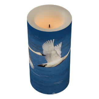 Swans in Flight 3x6 LED Candle