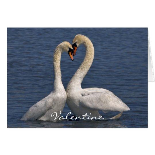Swans in Love Card - Valentine