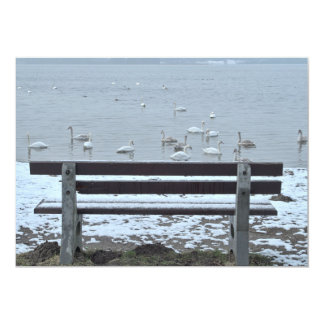 Swans, lake and a bench - invitation