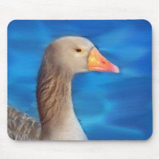 Swan's Lake Mouse Pad