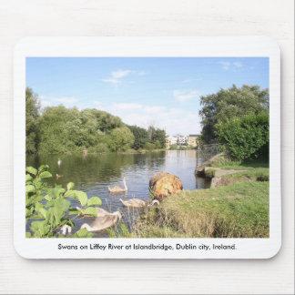 Swans on River Liffey, Islandbridge, Dublin City Mousepads