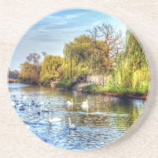 Swans on the River Nene HDR Drink Coasters
