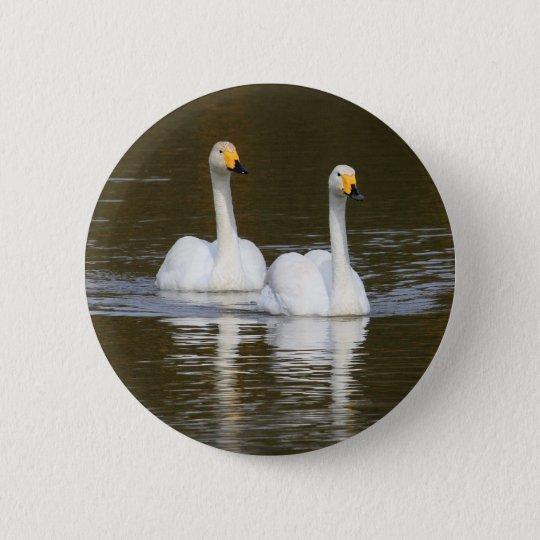 Swans Pinback Button