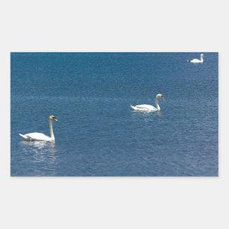 Swans Rectangular Sticker