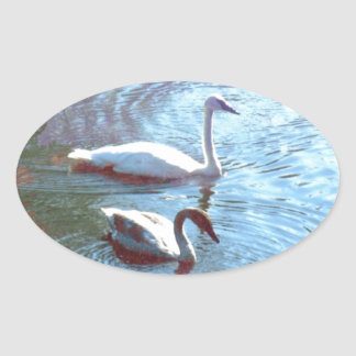 Swans Oval Stickers
