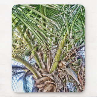 Swaying Palms Products Mouse Pad