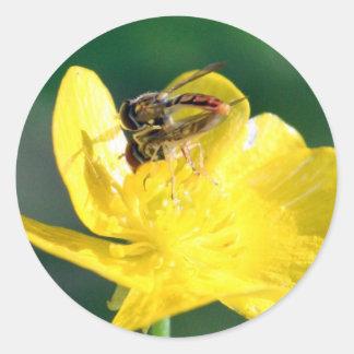 Sweat Bee Love Classic Round Sticker