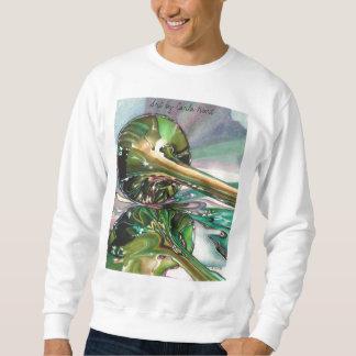Sweatshirt, Unisex Pullover Sweatshirts