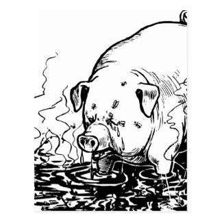 Sweaty Dirty Vintage Pig Illustration Postcard