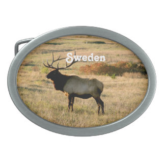 Swedish Elk Oval Belt Buckles