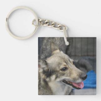 swedish-vallhund-2.jpg keychain