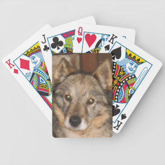 swedish vallhund.png bicycle playing cards